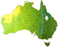 Green Tree Pythons