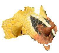 Visit to Australia 2013