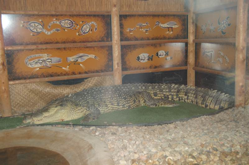 Reptile Gardens sd Reptile Gardens