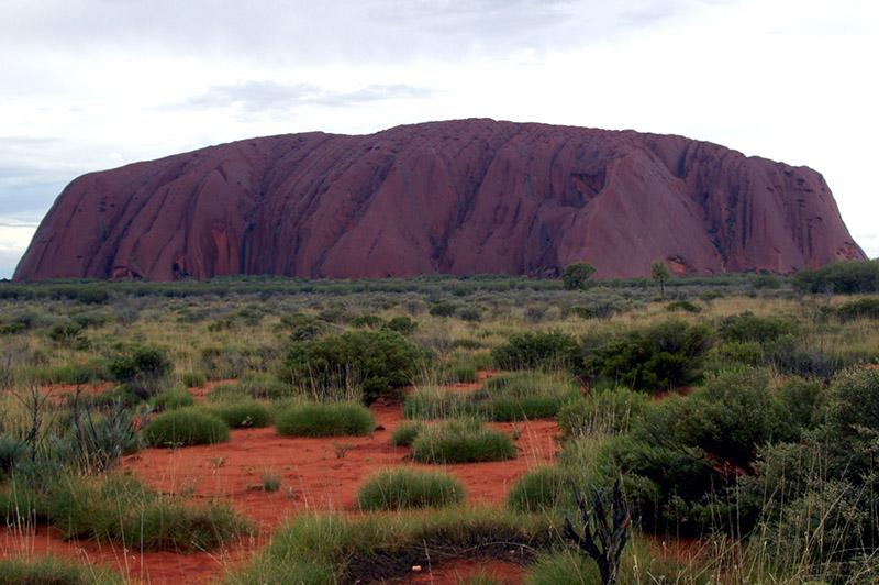 Western BTS habitat Uluru