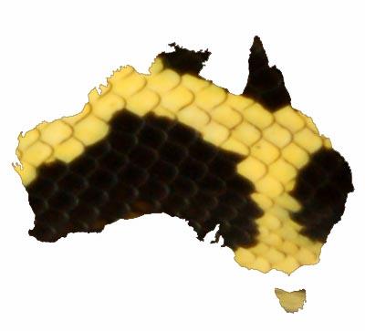 Australian Herps
